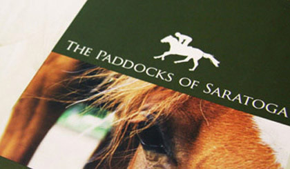 The Paddocks of Saratoga brochure cover and logo design